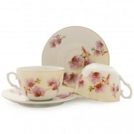Set cesti ceai Delicate